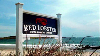 Red Lobster Endless Shrimp TV Spot, 'Sweet, Spicy, Savory' - Thumbnail 9