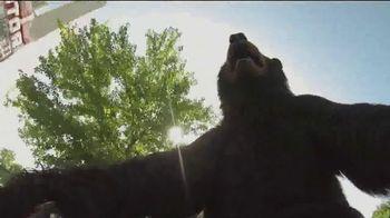 Black Bear Diner TV Spot, 'Bike Bear'