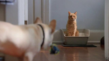 Fresh Step Extreme TV Spot, 'No More Cat'