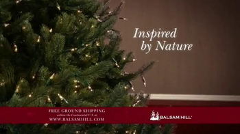 Balsam Hill TV Spot, 'Free Ground Shipping' - Thumbnail 3