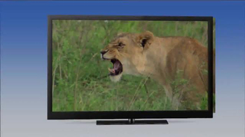Hulu TV Spot, 'Jack Hanna's Wild Countdown' - Thumbnail 1
