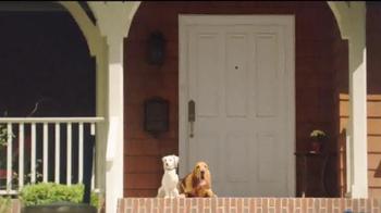 Shelter Insurance TV Spot, 'Porch Dogs' - Thumbnail 1