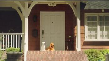 Shelter Insurance TV Spot, 'Porch Dogs' - Thumbnail 6