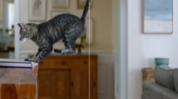Iams ProActive Health Indoor Weight Care TV Spot, 'Extra Pounds' - Thumbnail 5