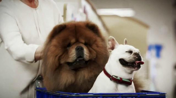 PetSmart TV Spot, 'Inspiration' Featuring Martha Stewart, Bret Michaels - Thumbnail 5