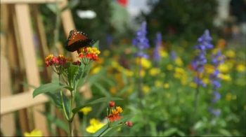 Transitions Optical TV Spot, 'HGTV Gardenista Kate English' - Thumbnail 9