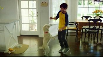 PetSmart TV Spot, 'Adoption Anthem' - Thumbnail 1