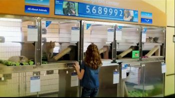 PetSmart TV Spot, 'Adoption Anthem' - Thumbnail 8