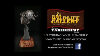 The Wildlife Gallery TV Spot, 'Capture The Memories' - Thumbnail 10