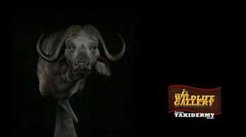 The Wildlife Gallery TV Spot, 'Capture The Memories' - Thumbnail 9