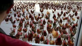 Carl's Jr. Big Chicken Fillet Sandwich TV Spot, 'Everybody Wants Some'