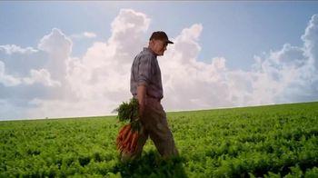 Philadelphia Garden Vegetable TV Spot Song by Charles Givings