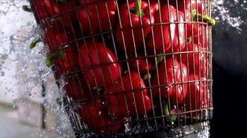 Philadelphia Garden Vegetable TV Spot Song by Charles Givings - Thumbnail 3