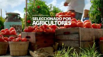Walmart TV Spot, 'Tomates Más Frescos' [Spanish] - Thumbnail 10
