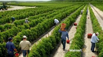 Walmart TV Spot, 'Tomates Más Frescos' [Spanish] - Thumbnail 3