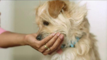 Milo's Kitchen TV Spot, 'Yoga' - Thumbnail 3