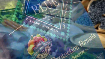 Blue Buffalo Life Protection Formula TV Spot, 'Finest Natural Ingredients' - Thumbnail 5