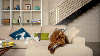 Nest TV Spot, 'Everyone Loves Their Nest DropCam. Except this Dog.' - Thumbnail 1