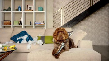 Nest TV Spot, 'Everyone Loves Their Nest DropCam. Except this Dog.'
