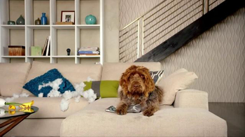 Nest TV Spot, 'Everyone Loves Their Nest DropCam. Except this Dog.' - Thumbnail 7