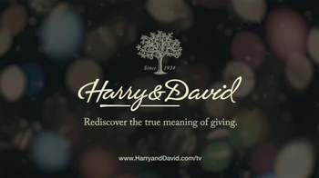 Harry & David TV Spot, 'Celebrate the Wonder of the Season' - Thumbnail 10