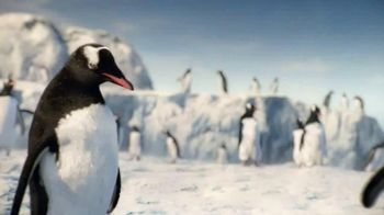 Kay Jewelers Better Than Black Friday Sale TV Spot, 'Penguin Kiss: Diamonds in Rhythm'
