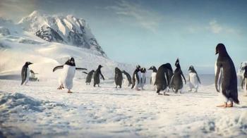 Kay Jewelers Better Than Black Friday Sale TV Spot, 'Penguin Kiss: Diamonds in Rhythm' - Thumbnail 1