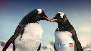 Kay Jewelers Better Than Black Friday Sale TV Spot, 'Penguin Kiss: Diamonds in Rhythm' - Thumbnail 8