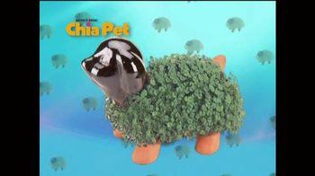 Chia Pet TV Spot, 'Get Hello Kitty, Teenage Mutant Ninja Turtles and More'