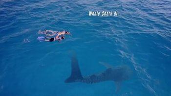 Cancun: Riviera Maya thumbnail