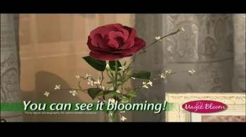 Magic Bloom TV Spot - Thumbnail 3