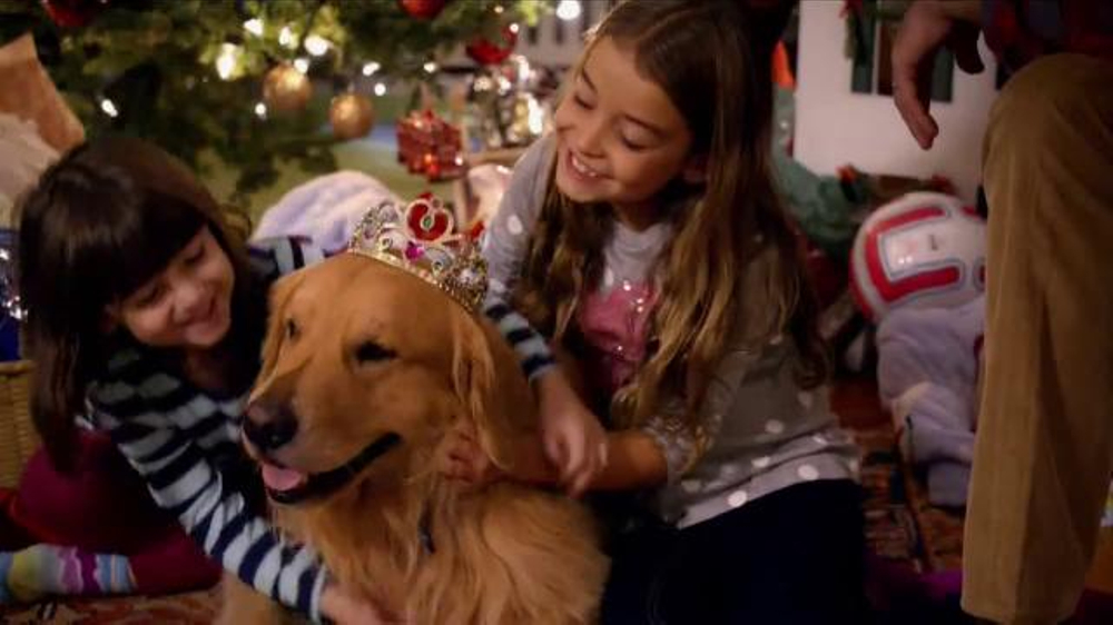 Blue Buffalo TV Commercial, 'Christmas Morning'