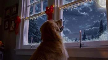 Blue Buffalo TV Spot, 'Christmas Morning' - Thumbnail 9