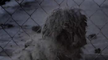 Humane Society TV Spot, 'Mikhail's Story' - Thumbnail 1