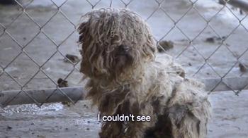 Humane Society TV Spot, 'Mikhail's Story'