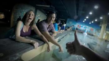 Visit Tampa Bay TV Spot, 'Don't Just Visit. Take Over!' - Thumbnail 7