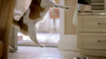 PetSmart TV Spot, 'Enthusiasm at Mealtime' - Thumbnail 1