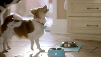 PetSmart TV Spot, 'Enthusiasm at Mealtime' - Thumbnail 2