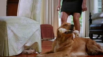 PetSmart TV Spot, 'Positive Chewing Habits' - Thumbnail 4