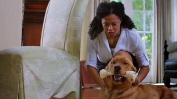 PetSmart TV Spot, 'Positive Chewing Habits' - Thumbnail 5