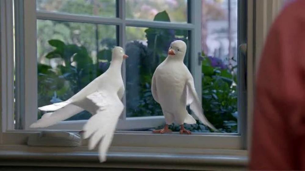 Birds Eye TV Commercial, 'Tweet Tweet'