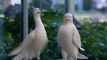 Birds Eye TV Spot, 'Tweet Tweet' - Thumbnail 3