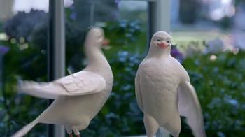 Birds Eye TV Spot, 'Tweet Tweet' - Thumbnail 4