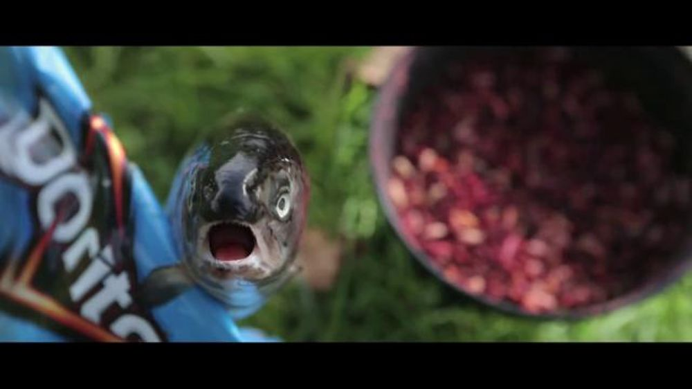 Doritos: Angler