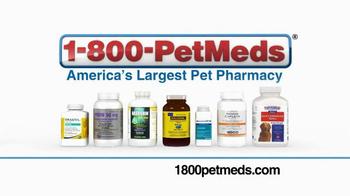 1-800-PetMeds TV Spot, 'When It's Cold Outside' - Thumbnail 7