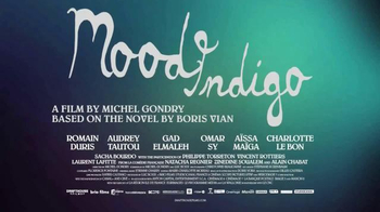 Mood Indigo Home Entertainment TV Spot - Thumbnail 9