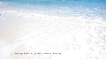 Florida Atlantic University TV Spot, 'Options' - Thumbnail 10