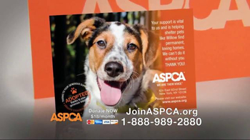 ASPCA TV Spot, 'You Can Change Everything' - Thumbnail 6