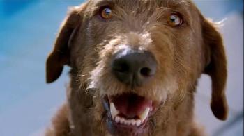 Pedigree Stackerz TV Spot, 'Soooooooooo Meaty!' - Thumbnail 3