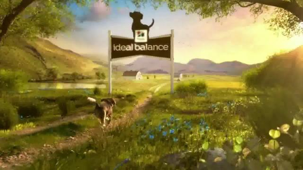 Hills Ideal Balance Dog Food Tv Commercial Balanced Ingredients